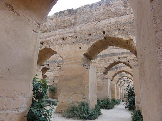 Médina de Meknès : caballerizas del rey