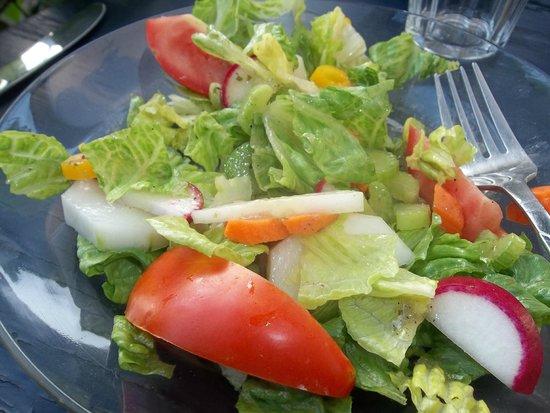 Sol Food: Salad