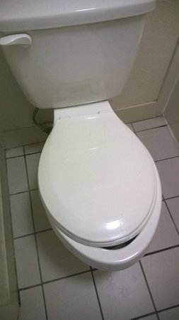 Days Inn Cookeville: Round seat on oval toilet.  Really?!