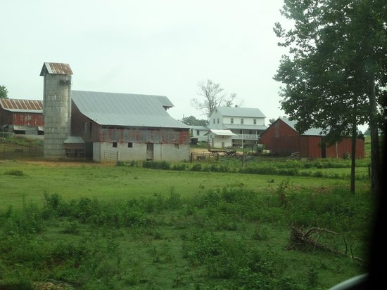 Amish Heritage Welcome Center and Museum: farm ethridge tn amish