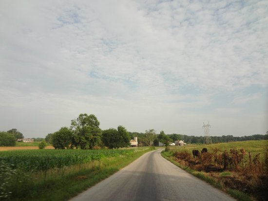 Amish Country Tours In Tennessee