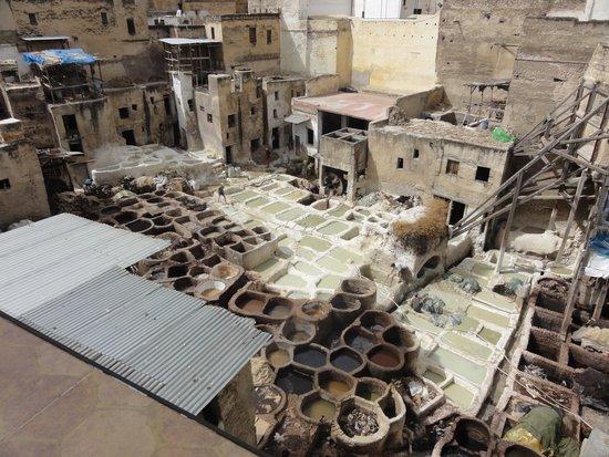 Medina of Fez: barrio de los tintoreros