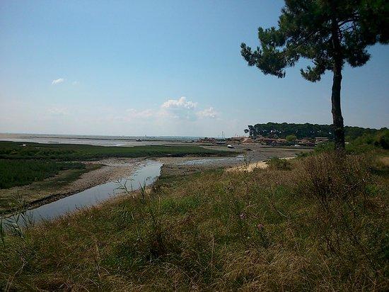 Camping Airotel Les Viviers: côté bassin à marée basse