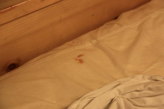 Great Wolf Lodge : Blood on mattree pad near candy wrapper