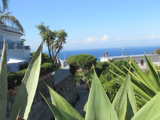 Grifo Hotel Charme & SPA: paesaggio