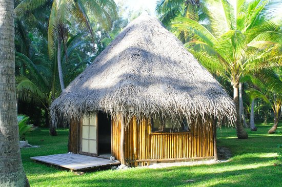 Blue Heaven Island lodge : Notre bungalow