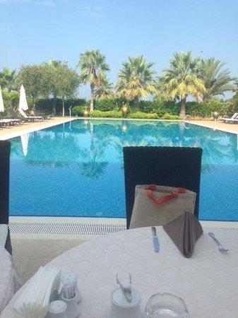 Villa Augusto: pool