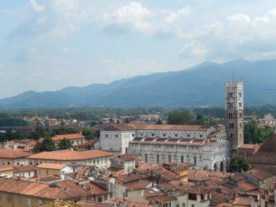 Guinigi Tower: Vue de la tour