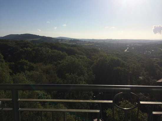 Celtic Manor Resort: Morning view from balcony!