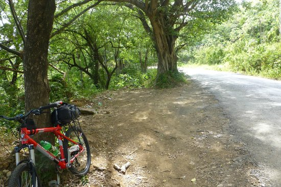 Guanabikers: On route to Rincon Natl. Park