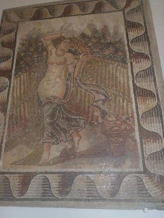Carthage Museum : Mozaika