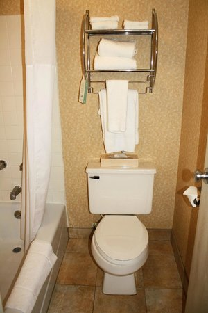 Days Inn & Suites Plattsburgh: Washroom