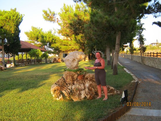 Kreta Natur: entrance/driveway