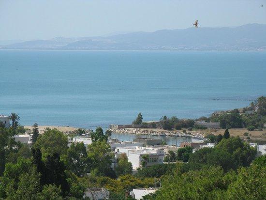 Carthage Museum: Widok na pobliski porcik