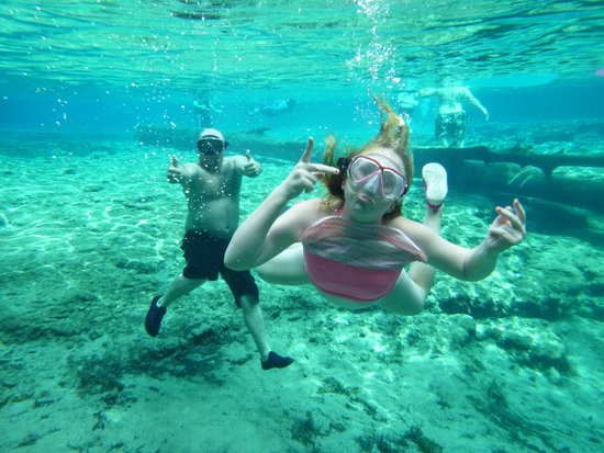 Ginnie Springs : Swimming in the main spring