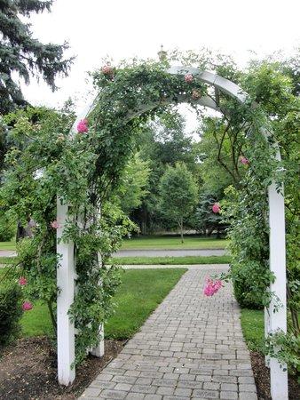 Central Park Rose Garden: trellis on edge of the rose garden