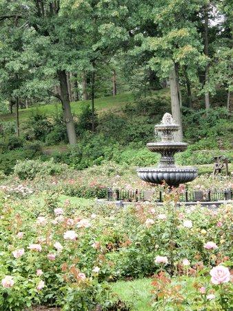 Central Park Rose Garden: fountain in the center of the garden