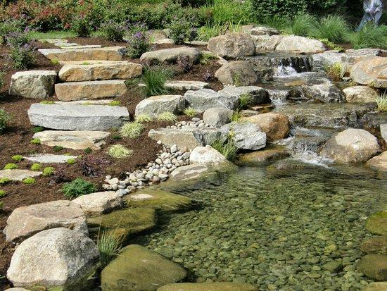 Central Park Rose Garden: water feature