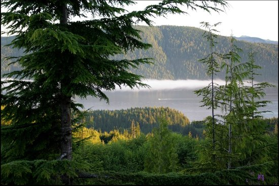 Soule Creek Lodge: Morning view from cabin