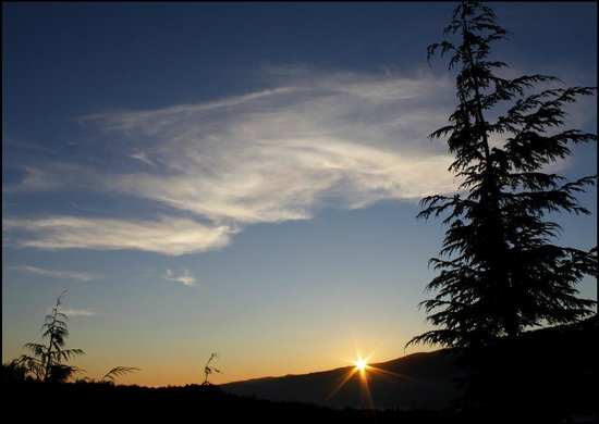 Soule Creek Lodge: Evening view from cabin