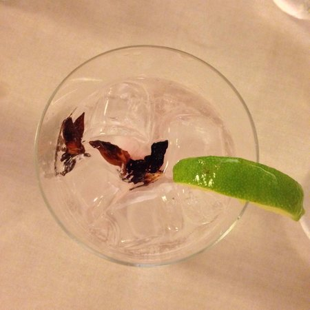 il buco Sorrento: They specialise in gin and tonic with lots of choice (eg mine came with hibiscus but my parents