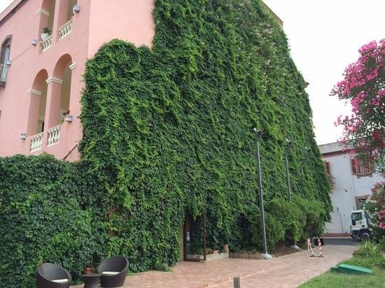Hotel Palazzo Sa Pischedda Bosa: View of ivy covered side of hotel