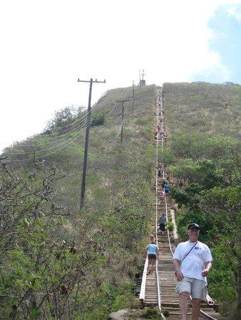 Koko Crater Trail: Koko head climb- going up