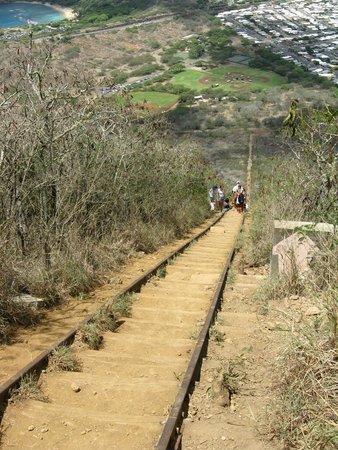 Koko Crater Trail: Koko head climb