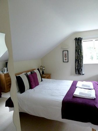 Pandy Isaf Country House Bed & Breakfast: Lovely room 1