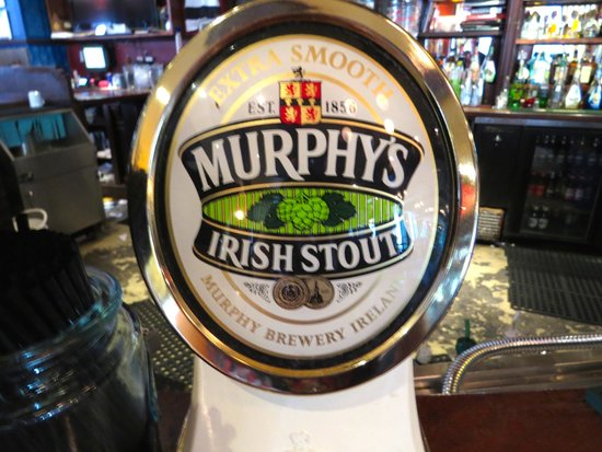 Durty Nelly's Authentic Irish Pub : As good as Guinness in my opinion