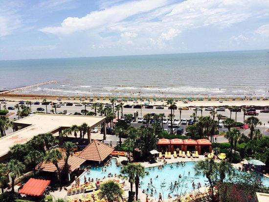The San Luis Resort: Amazing!