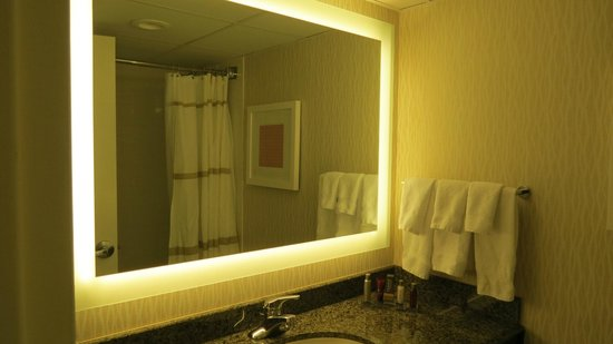 Marriott St. Louis Airport: Improved bathroom lighting