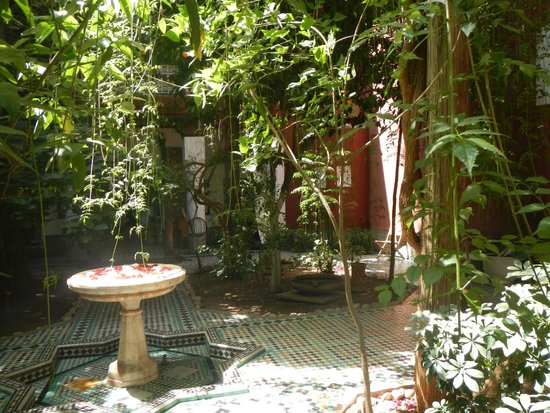 Riad Kaiss : one of the shady courtyards