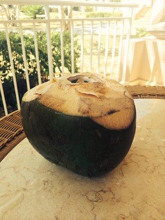 Paradisus Rio de Oro Resort & Spa: The coconuts every day!!! Just ask the gardener