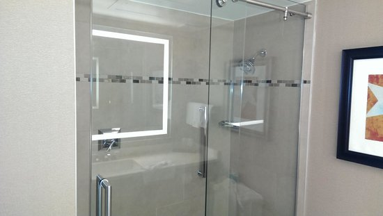Embassy Suites by Hilton Austin - Downtown/Town Lake: Glass shower doors were nice