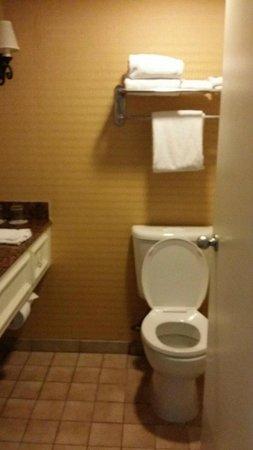 San Antonio Marriott Riverwalk: Large bathroom