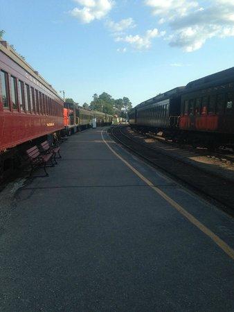 Essex Steam Train & Riverboat: Trains in the yard