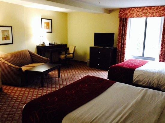 Comfort Suites Columbia : 306