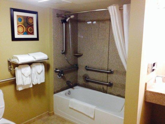 Comfort Suites Columbia: 306