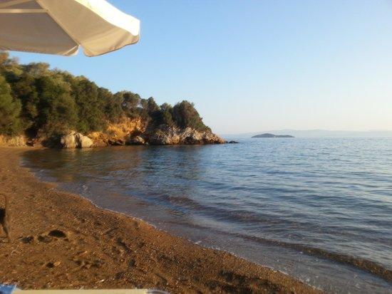 Hotel Punta Club: spiaggia albergo