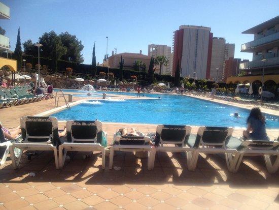 Hotel Mediterraneo Benidorm : Piscina