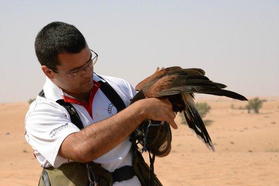 Platinum Heritage Luxury Tours and Safaris: Amazing Falcon trainer