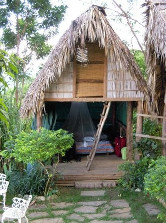 Tubagua Plantation Eco Lodge: The palapa we stayed in