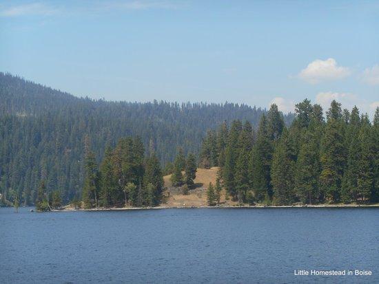 McCall Lake Cruises: Lake view
