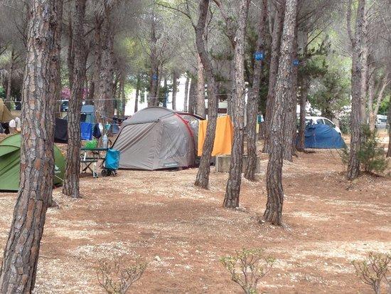 Camping Cala Gonone: Tende cala gonone