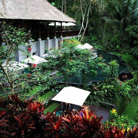 Maya Ubud Resort & Spa: Spa Pool