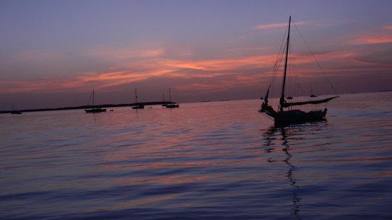 Casa Morada: the resort's sunset cruise heading back in