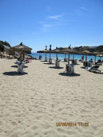 OLA Hotel El Vistamar : beach 20 mins walk