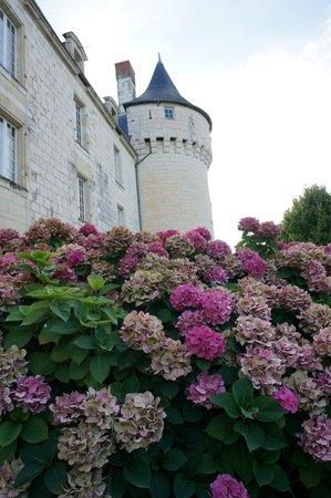 Château de Marçay  : Front of château