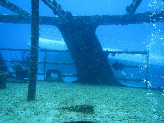 NIrvana Dive shop: sub and ship
